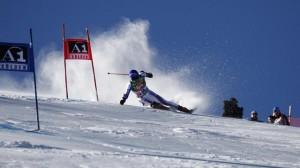 Горные лыжи, как один из видов соревнований на Зимней олимпиаде